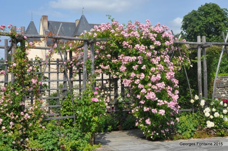 soulignonne château de ransanne rosiers1